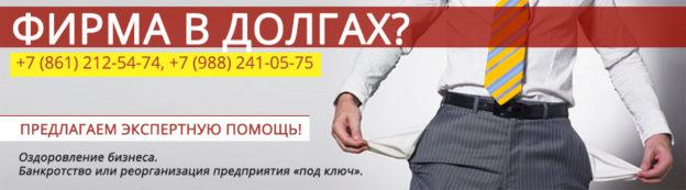 Основы банкротства юридических лиц Краснодар